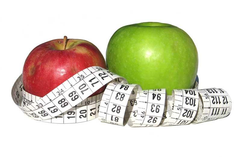 pontos menu de dieta
